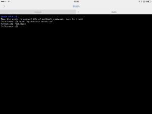 Zu sehen ist das Interface von Pythonista in dem die StaSH Shell angezeigt wird